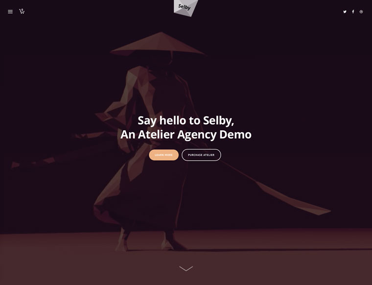 selby-demo